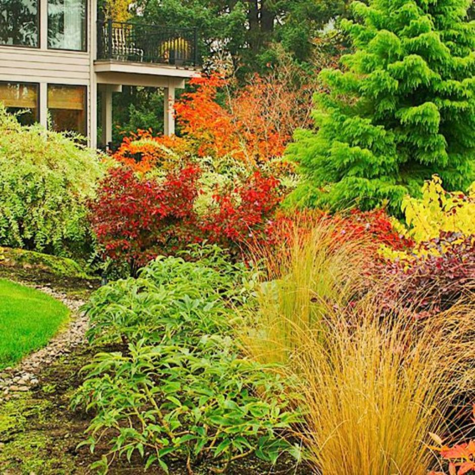 15 Incredible Front Yard Rock Garden Landscaping Ideas You: Colorful Landscaping With Low Maintenace Flower Bushes 12