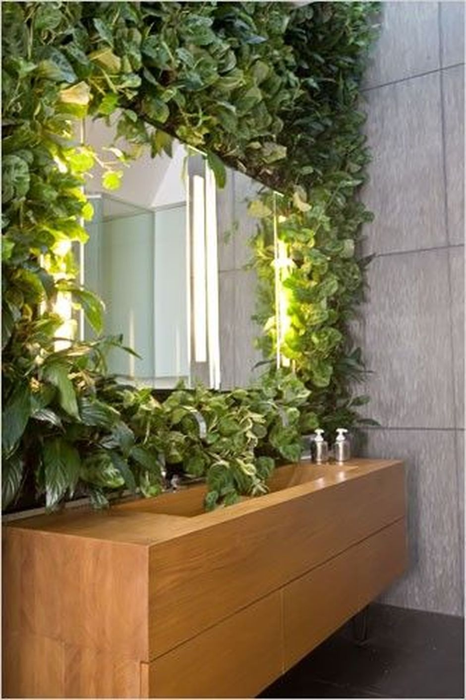Marvelous Indoor Vines And Climbing Plants Decorations 60